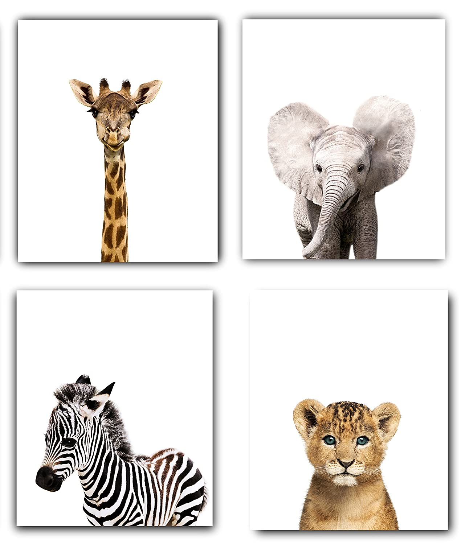 Safari Baby Animals Nursery Decor Art - Set of 4 Unframed Wall Prints 8x10 Designs by Maria Inc.