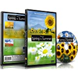 Relaxing Music Nature DVD - Seasons: Spring & Summer
