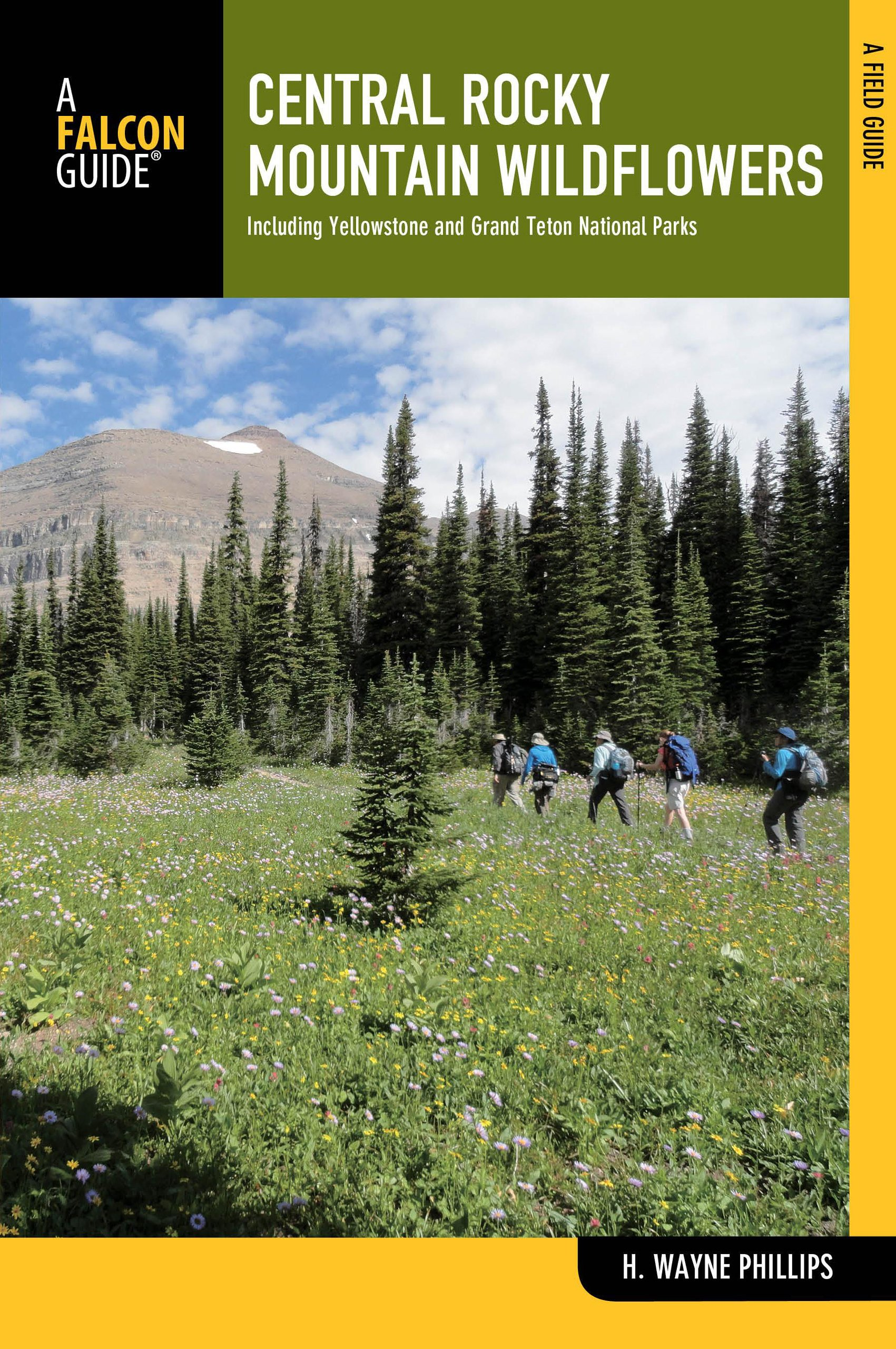 Central Rocky Mountain Wildflowers: Including Yellowstone And Grand Teton National Parks (Wildflower Series) PDF