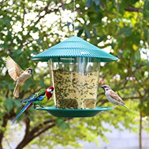 Hanizi Panorama Bird Feeder, Plastic Bird Food Feeder with Roof Container Waterproof Hanging for Garden Decoration 2.6 lbs (Green)