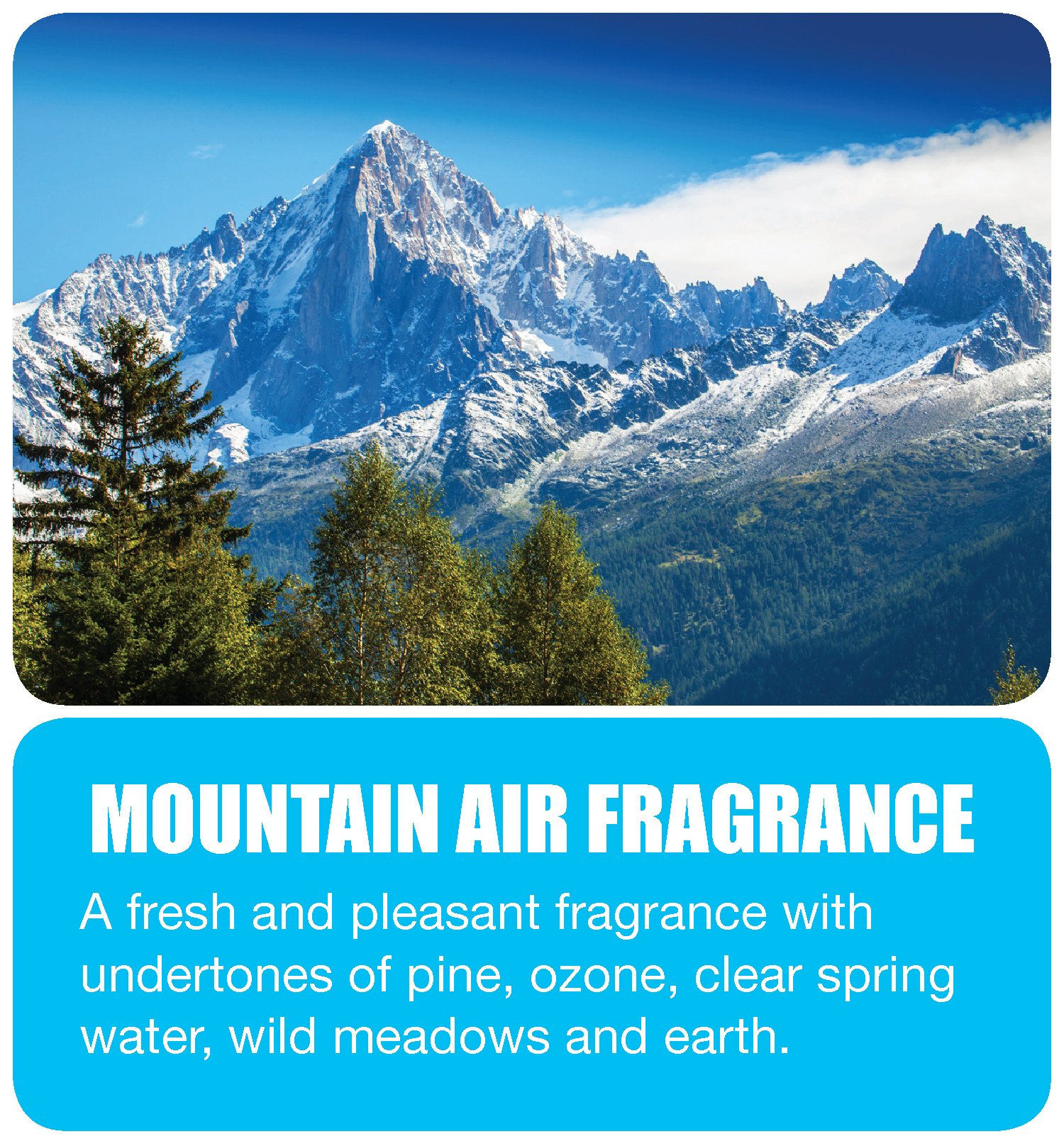 Big D 463 Concentrated Room Deodorant for Metered Aerosol Dispensers, Mountain Air Fragrance, 7 oz (Pack of 12) - Air freshener ideal for restrooms, offices, schools, restaurants, hotels, stores by Big D (Image #2)