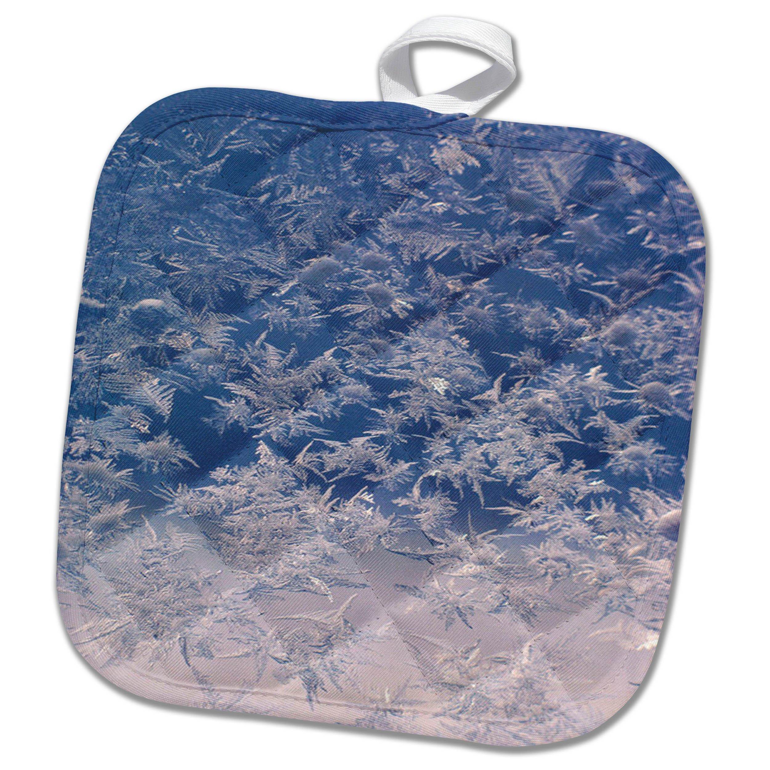 3dRose TDSwhite – Winter Seasonal Nature Photos - Window Snowflakes - 8x8 Potholder (phl_284946_1)