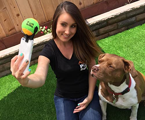 The Best Dog Selfies! Pooch Selfie