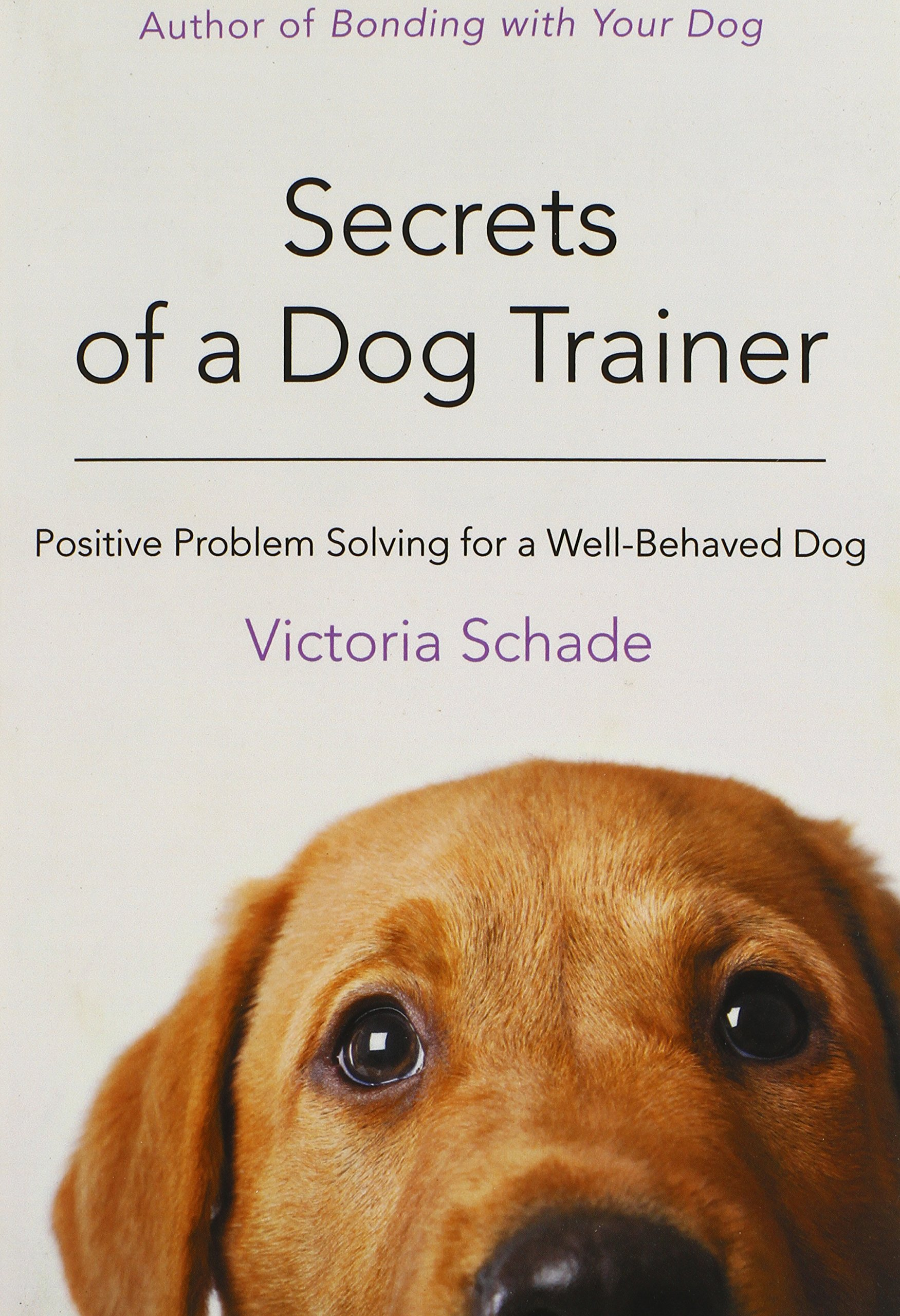 Secrets-of-a-Dog-Trainer-Positive-Problem-Solving-for-a-Well-Behaved-Dog