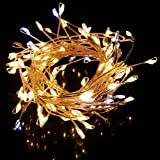 String Lights,Bienna 6 ft/2 M 120 LED USB Powered Silver Wire Weatherproof Lighting for Outdoor Bedroom Indoor Patio Cafe Christmas Xmas Tree Holiday Wedding Party(Warm White+Cool White Flash Rice Gra