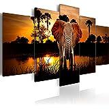 Impression sur toile 200x100 cm - Grand format! 5 pieces - Image sur toile - Images - Photo - Tableau - motif moderne - Décoration - tendu sur chassis - paysage Afrique Animal Animaux éléphant g-C-0024-b-m 200x100 cm B&D XXL