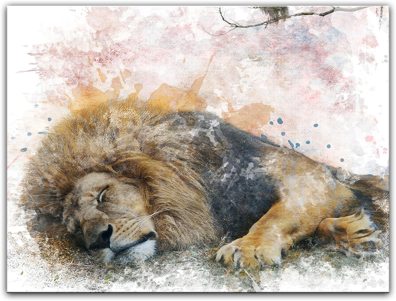 Bilderdepot24 Cuadros en Lienzo Lámina Reproducción Acuarela león II 80 x 60 cm - Listo tensa, Directamente Desde el Fabricante: Amazon.es: Hogar