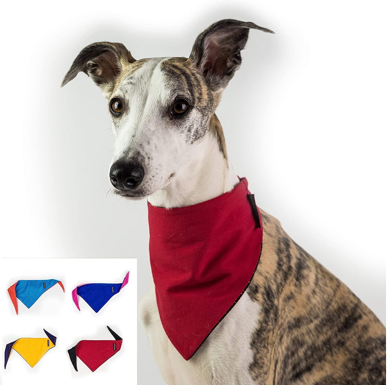 Dognsug Dog Bandana Cooling Pet Scarf Neckerchief Bib Collar Small Medium Large Reversible World Cup Red /& White Yellow Blue Orange Pink Purple Designer