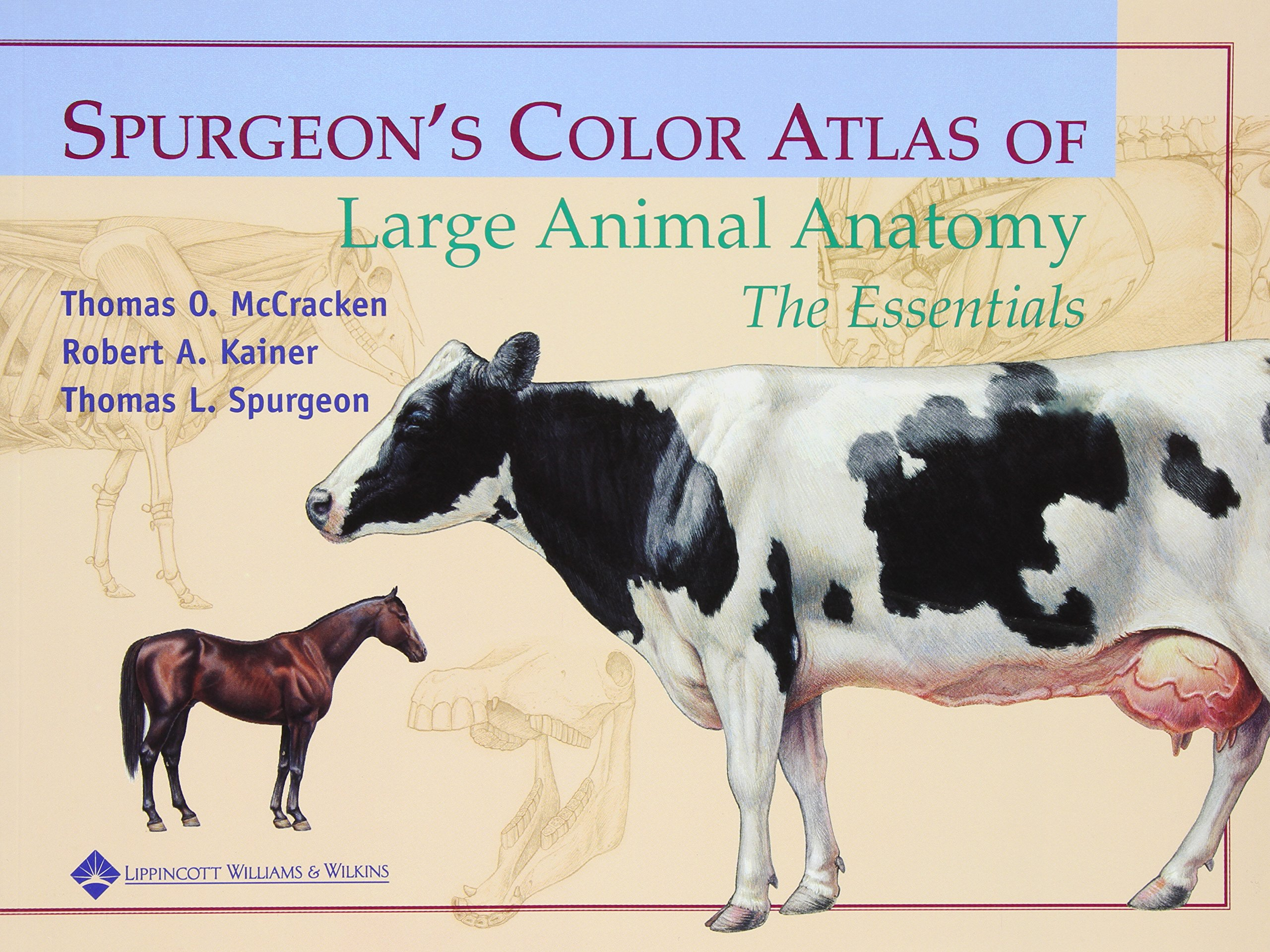 Spurgeons Color Atlas Of Large Animal Anatomy The Essentials