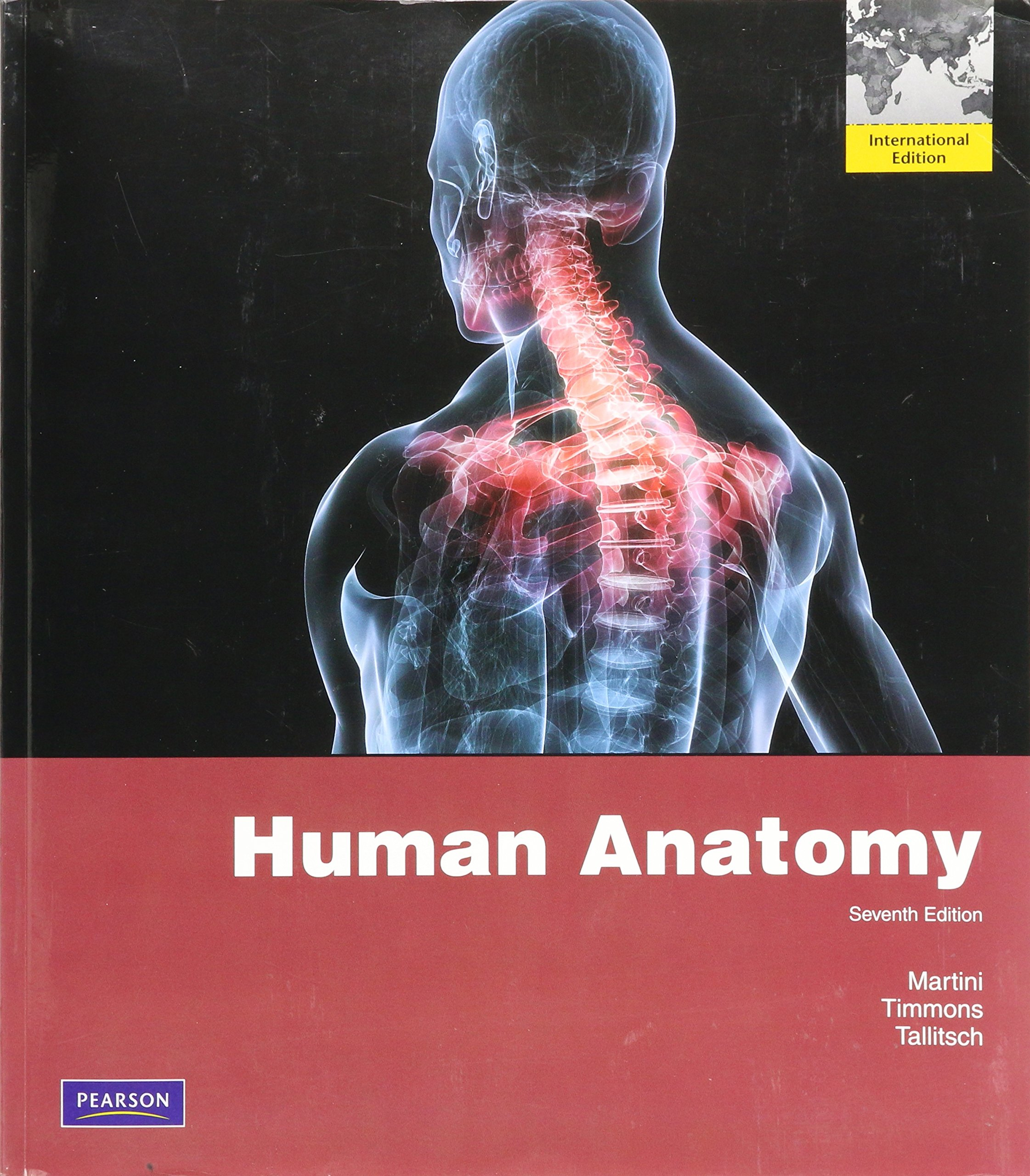 Human Anatomy: International Edition: International Version, Martini ...