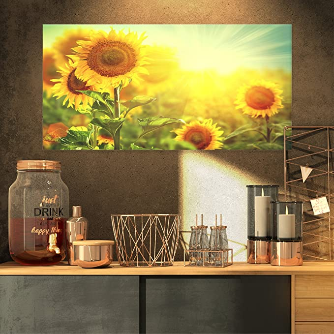 Sunflower Field | Sunflower Field Pictures | Sunflower Field Pictures for the Kitchen | Kitchen Decor | Sunflower Decor | Sunflower Kitchen Decor