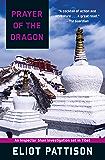 Prayer of the Dragon (An Inspector Shan Investigation Book 1)