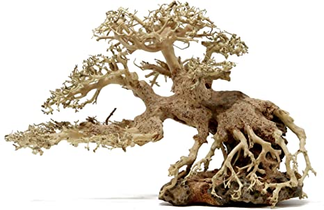 Amazon Com Bonsai Driftwood Aquarium Tree Bsc 8 Inch Height 12 Inch Length Natural Handcrafted Fish Tank Decoration Helps Balance Water Ph Levels Stabilizes Environments Easy To Install Pet Supplies