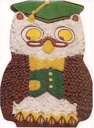 Amazoncom Wilton Mister Owl Graduate Cake Pan 5027644 1978