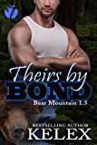 Theirs by Bond: Before the Epilogue (Bear Mountain Book 21)