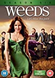 Weeds - Season 6 [DVD]