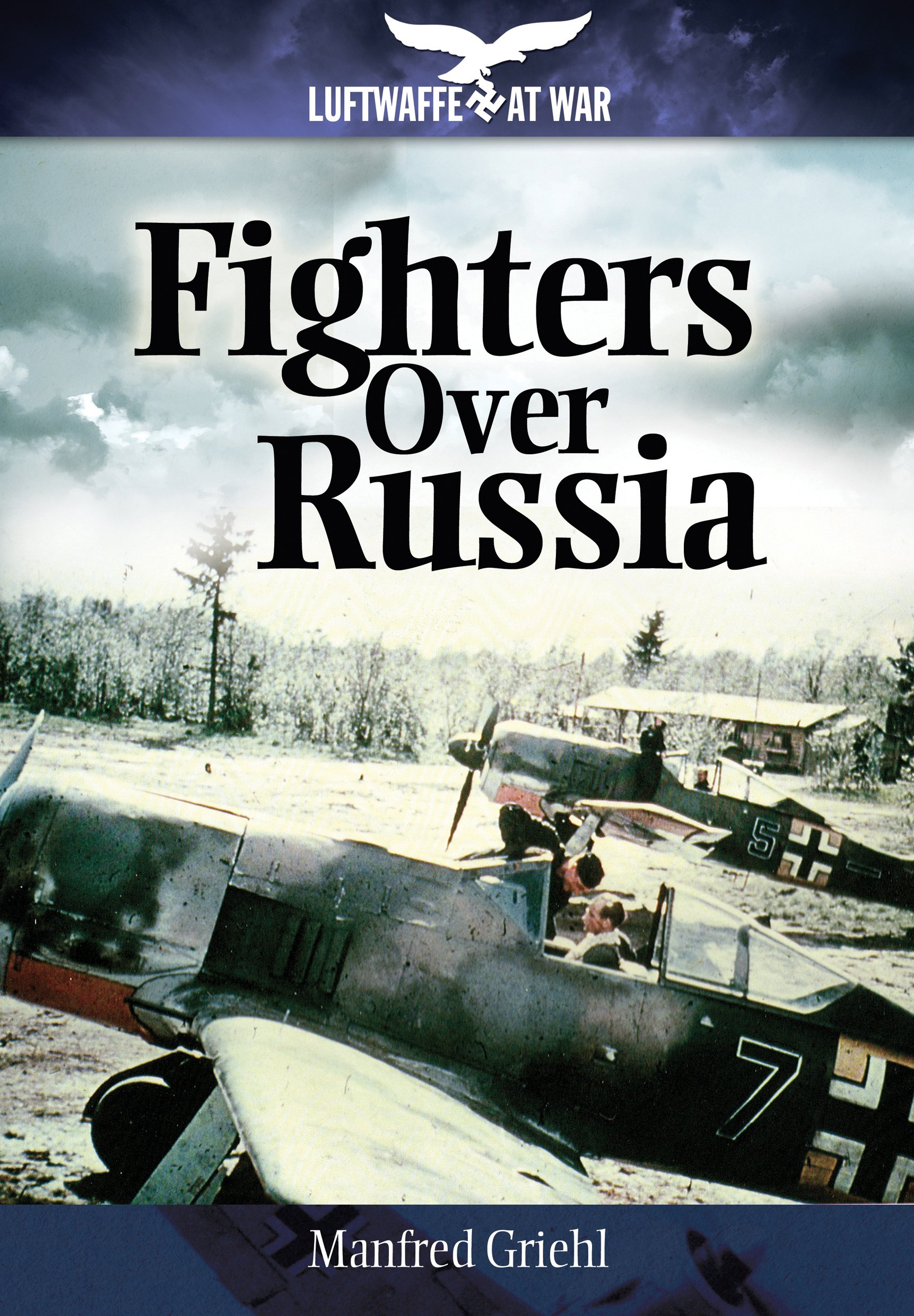 Fighters Over Russia (Luftwaffe at War) pdf