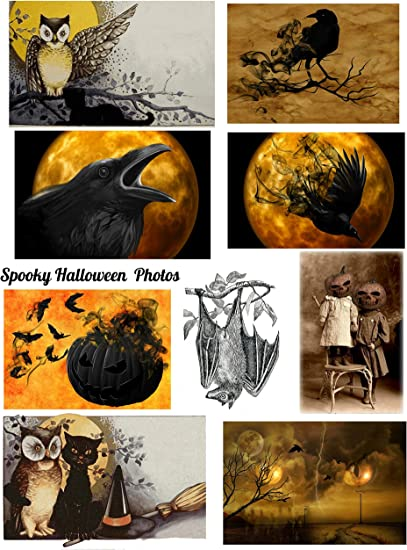 Altered Art 8.5 x 11 Halloween Spooky Photos Collage Sheet Halloween Scrapbooking ATC