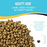 Solid Gold - Mighty Mini Small & Toy Breed Dry