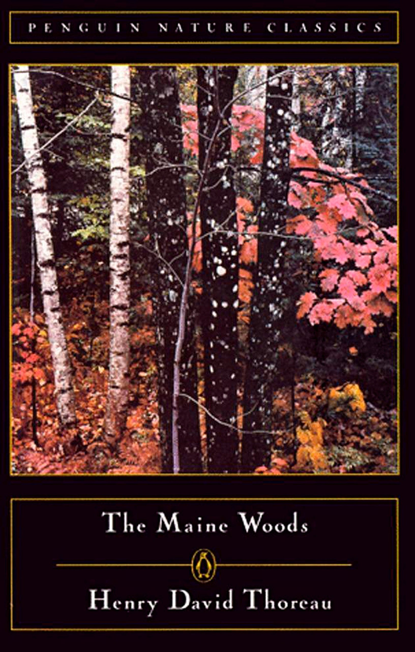 Sign up for new styles from Maine Woods