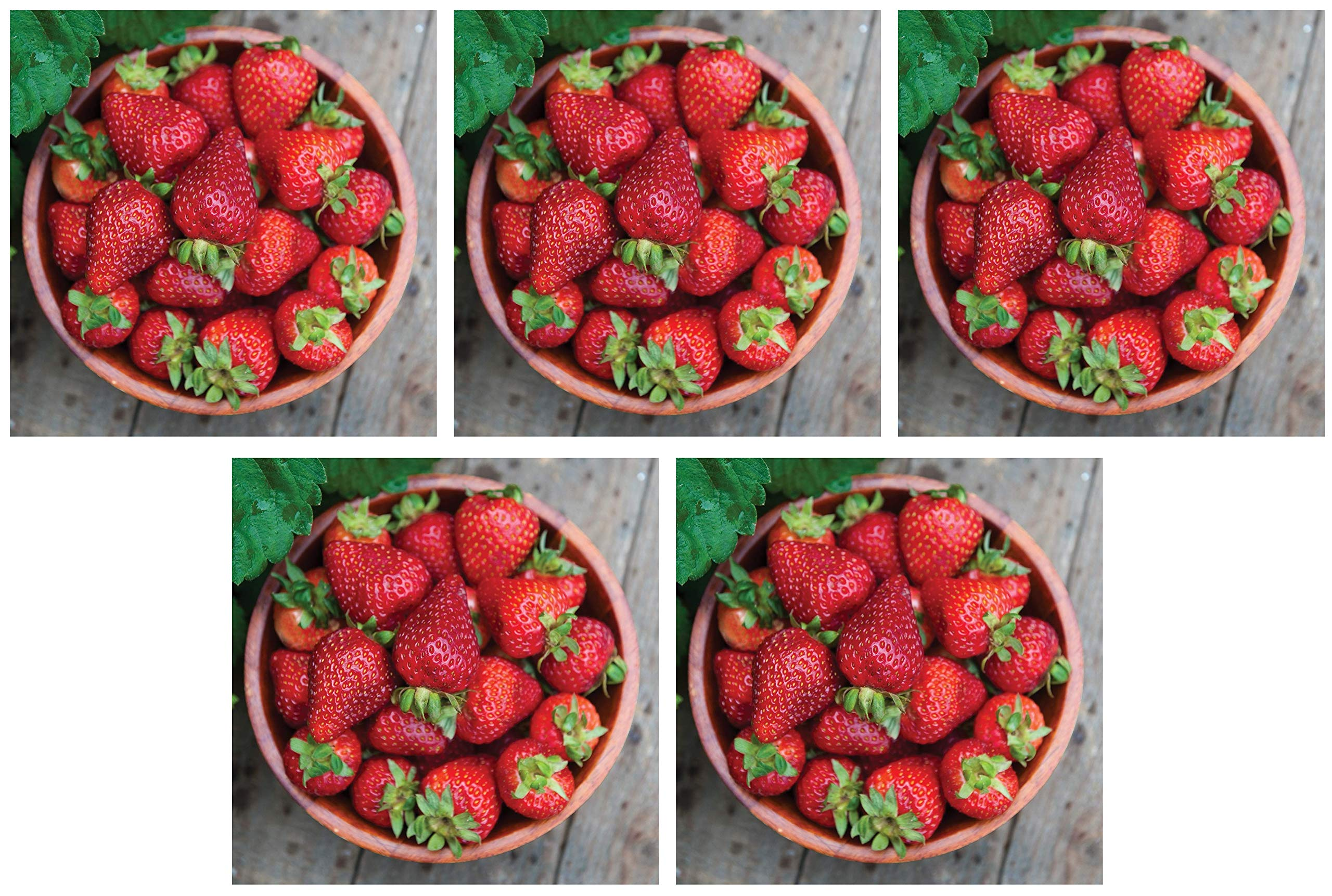 Burpee 'Seascape' Ever-Bearing Strawberry Shipped as 25 Bare Root Plants (Fіvе Расk) by  (Image #1)