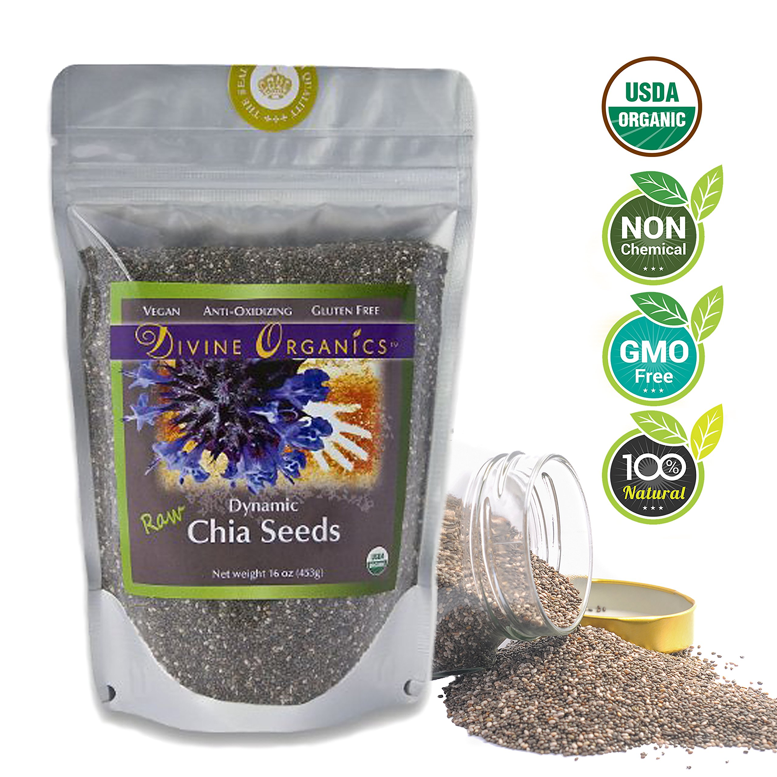 Divine Organics, 16 oz Dynamic Chia Seeds - Certified Organic - Smoothies, Desserts, Salads, Soups - High in Protein, Fiber, Antioxidants