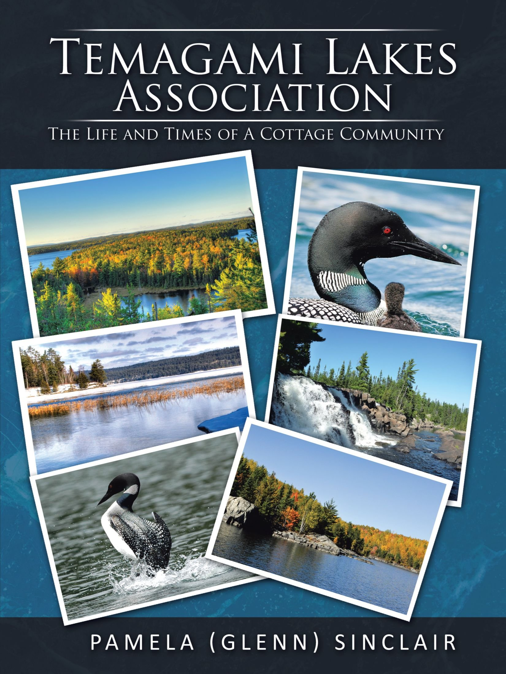 Download Temagami Lakes Association: The Life And Times Of A Cottage Community ebook