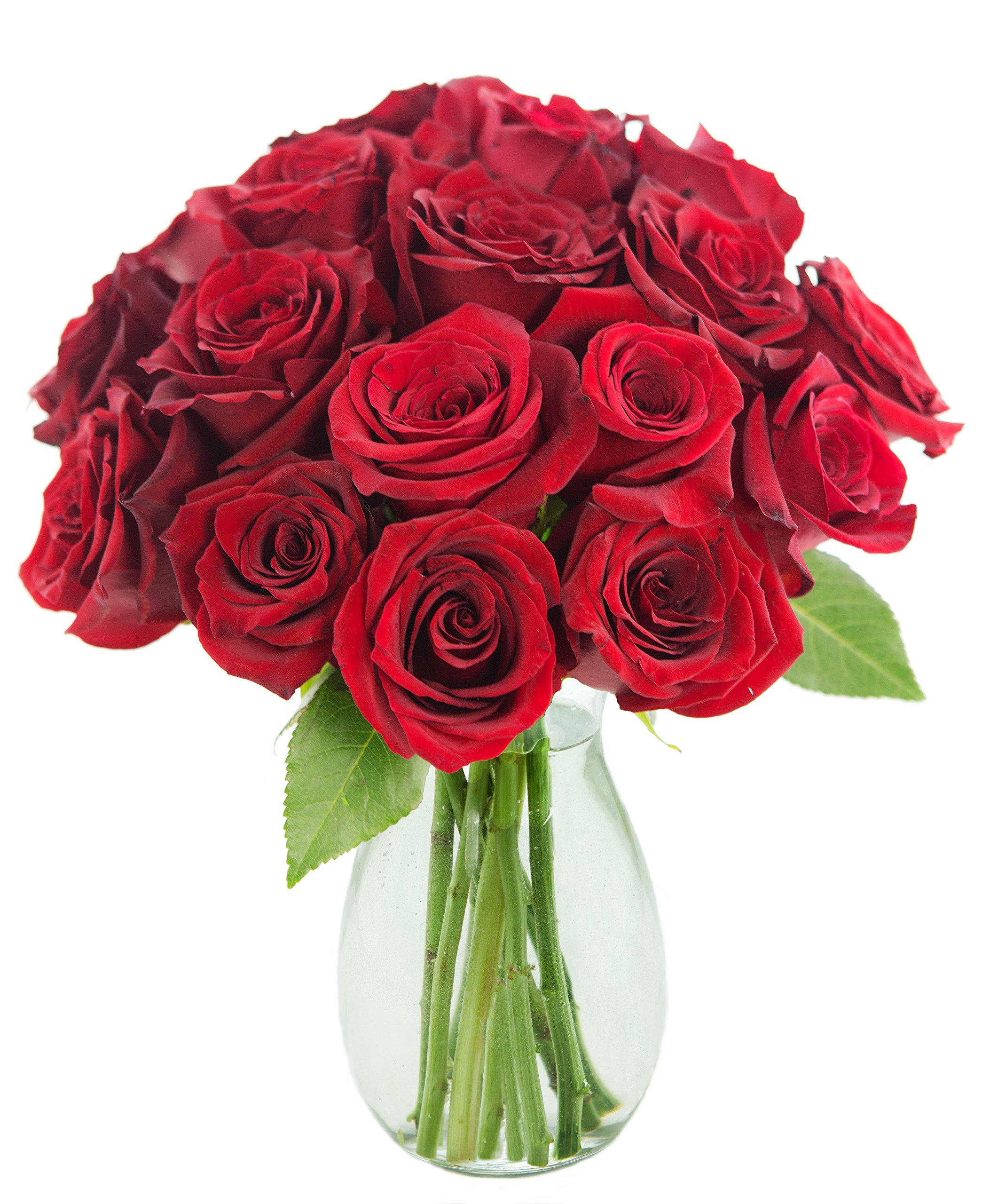 The Romantic Classic Red Rose Bouquet of 18 Fresh Cut Red Roses (Farm-Fresh, Long-Stem) with Free Vase Included