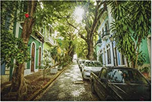 Old San Juan, Puerto Rico - Green Trees Line Streets 9033605 (Premium 1000 Piece Jigsaw Puzzle for Adults, 20x30, Made in USA!)
