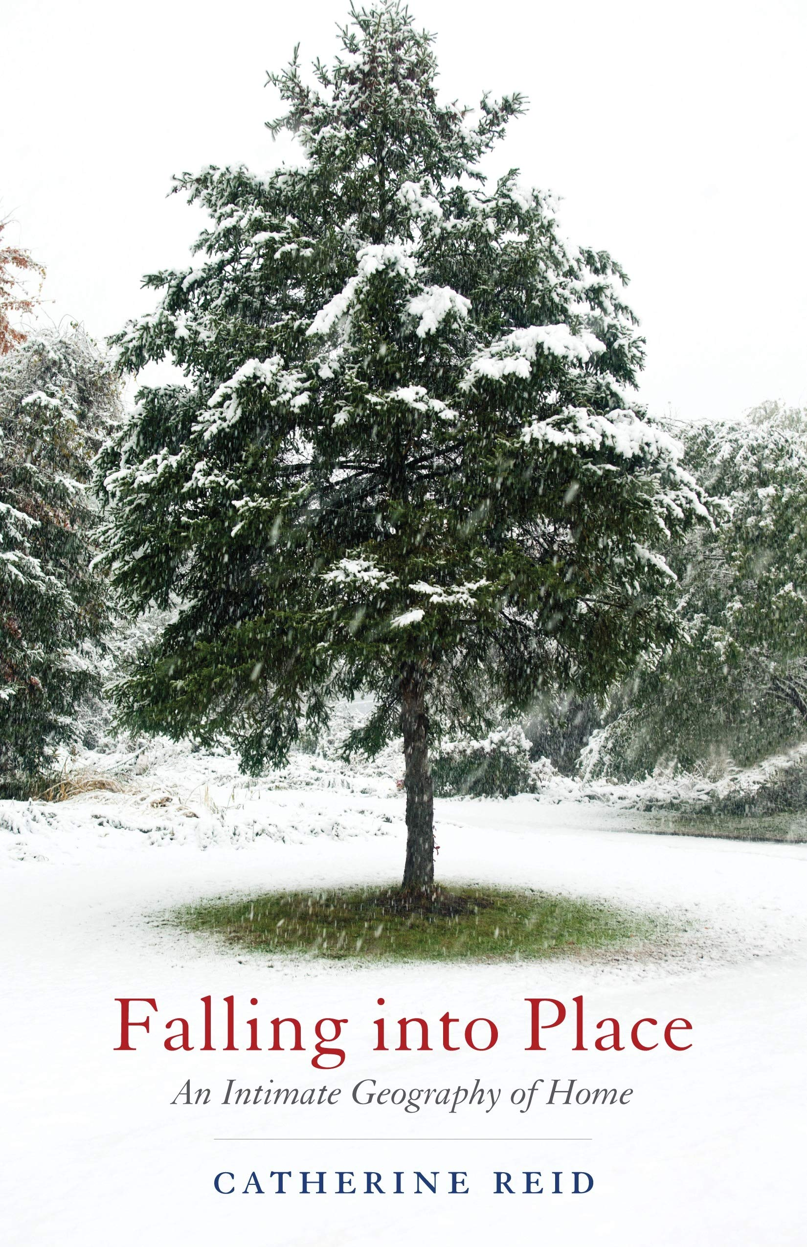Falling into Place: An Intimate Geography of Home ebook