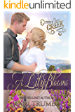 A Lily Blooms (Cutter's Creek Book 4)