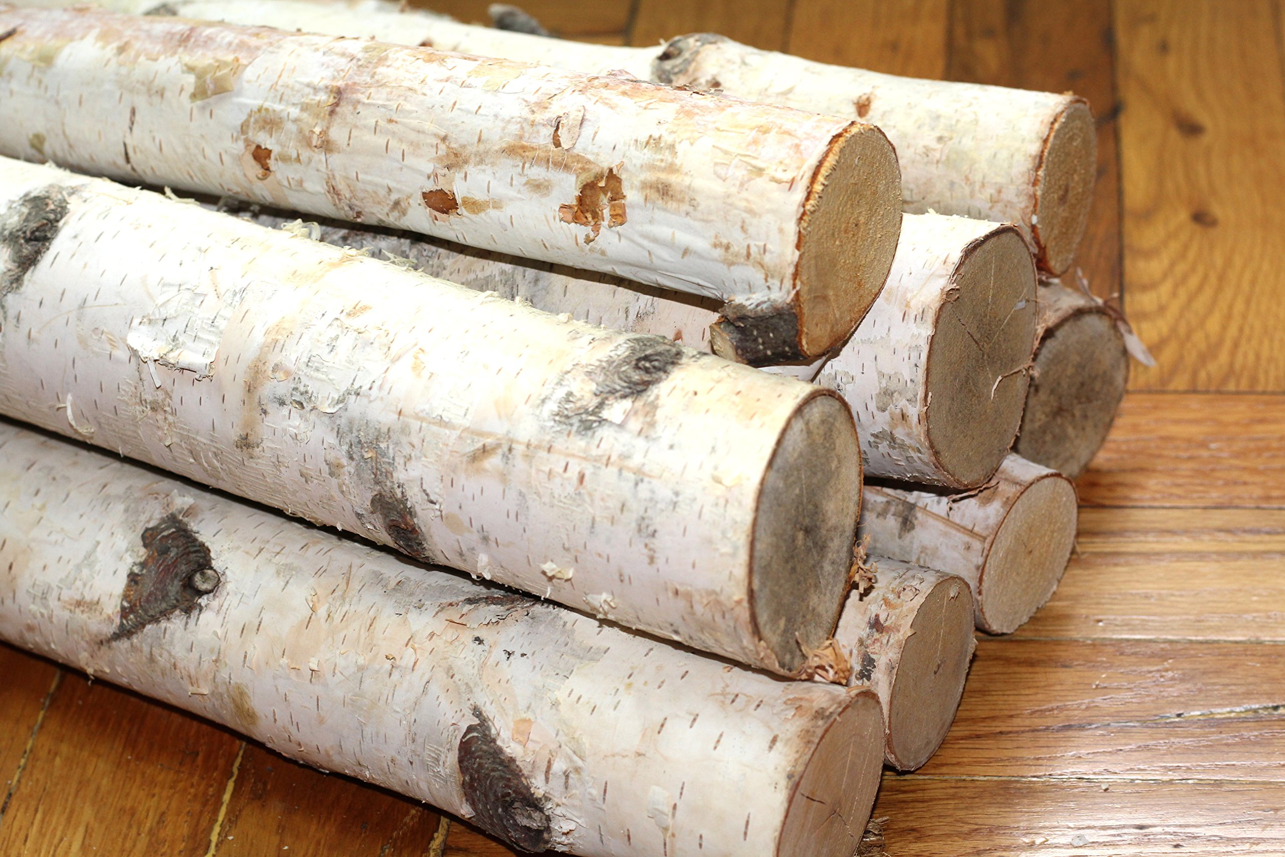 Northern white birch logs. set of 8 logs