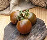 Black Prince Heirloom Tomato Premium Seed Packet