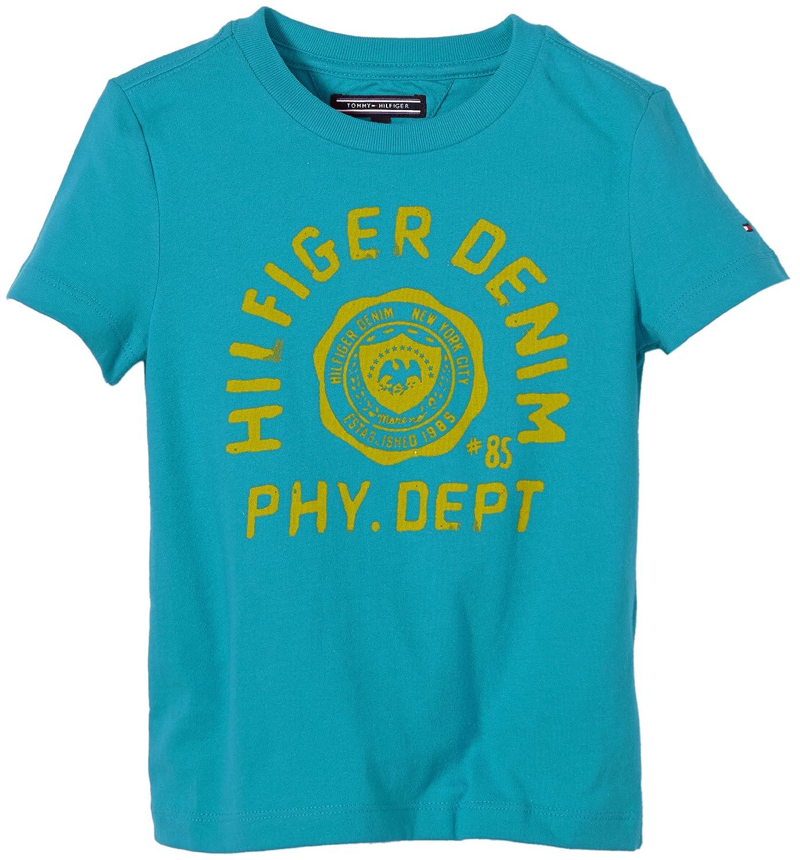 Tommy Hilfiger Federer CN, Camiseta para Niños, Turquesa (Blue ...