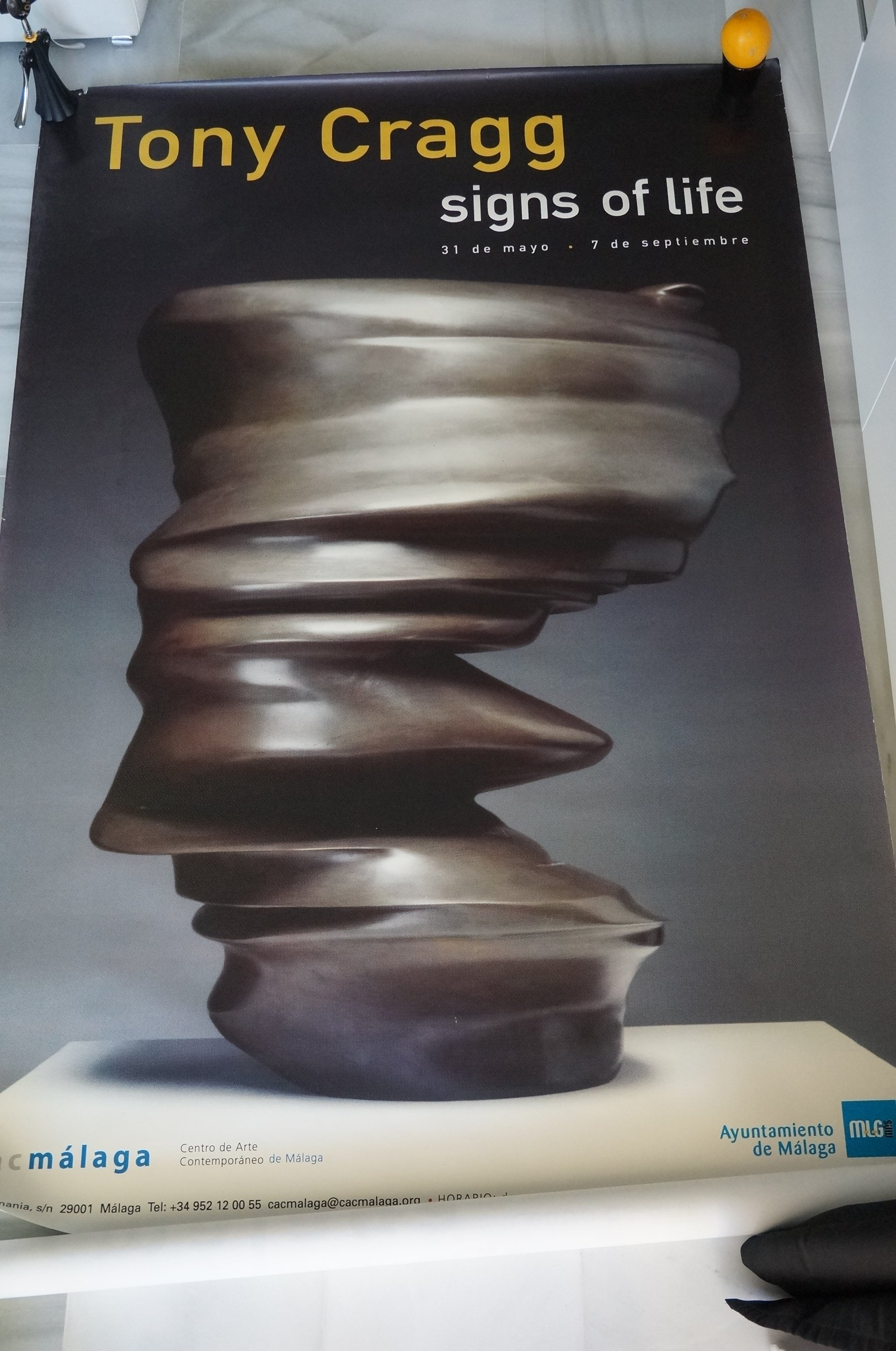 CARTEL TONY CRAGG CAC MÁLAGA SIGNS OF LIFE 2003 175X120 CM ...