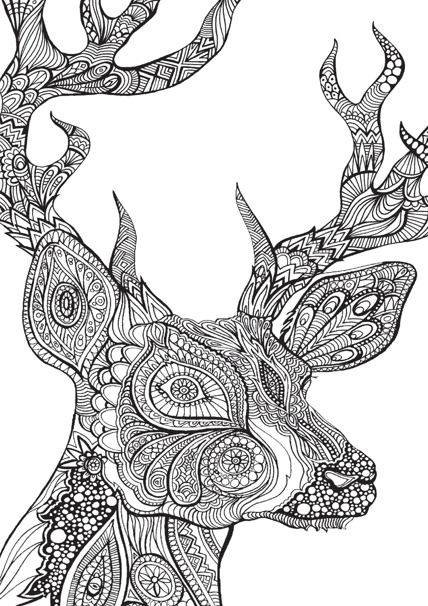 Art Therapie Bestiaire Extraordinaire 100 Coloriages Anti Stress