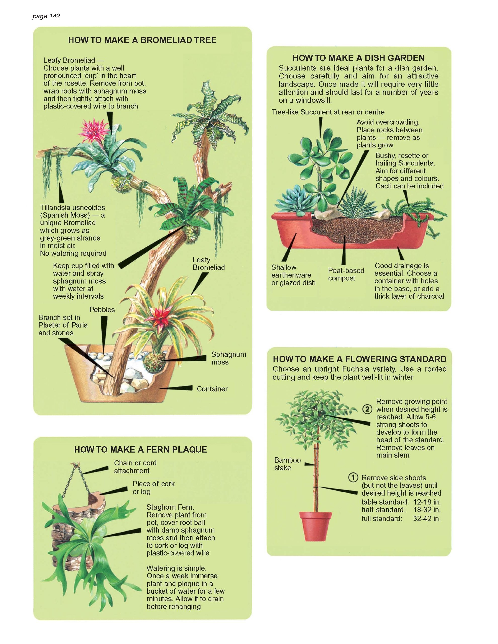 the indoor plant and flower expert d g hessayon 9781909663008