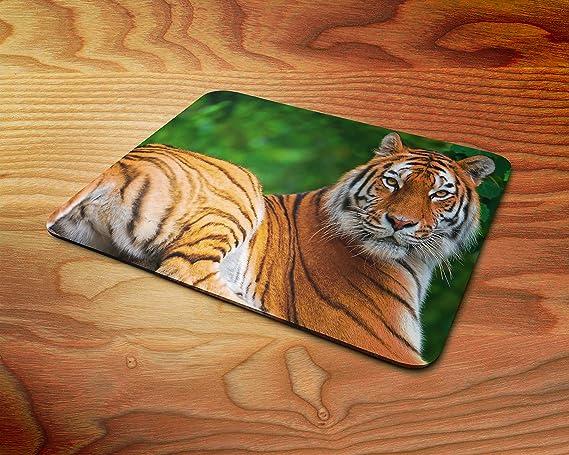 Amazon.com: Big Cats Tiger Rubber Mouse Mat PC Mouse Pad ...