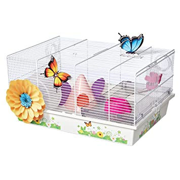 Amazon com : MidWest Homes for Pets Hamster Cage | Beautiful