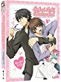 Sekai Ichi Hatsukoi: World's Greatest First Love - Seasons One and Two