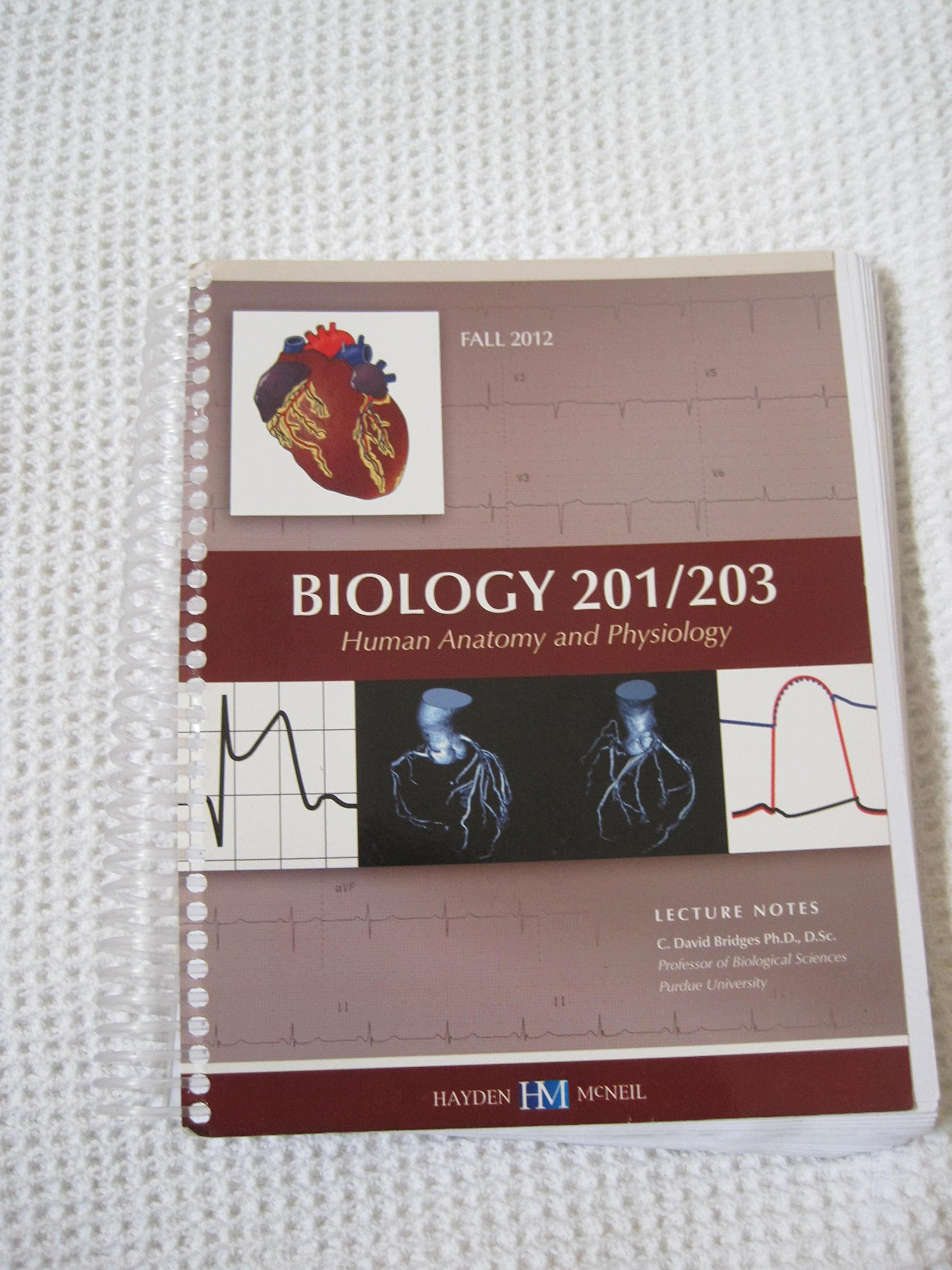 Encantador Human Anatomy And Physiology Lecture Notes Imagen ...