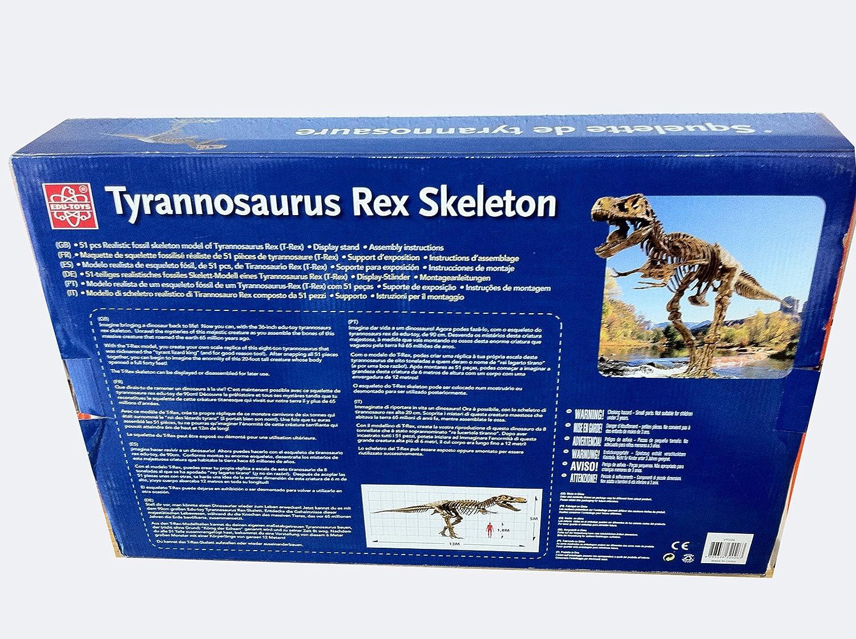 XL Tyrannosaurus Rex Esqueleto de dinosaurio 91cm