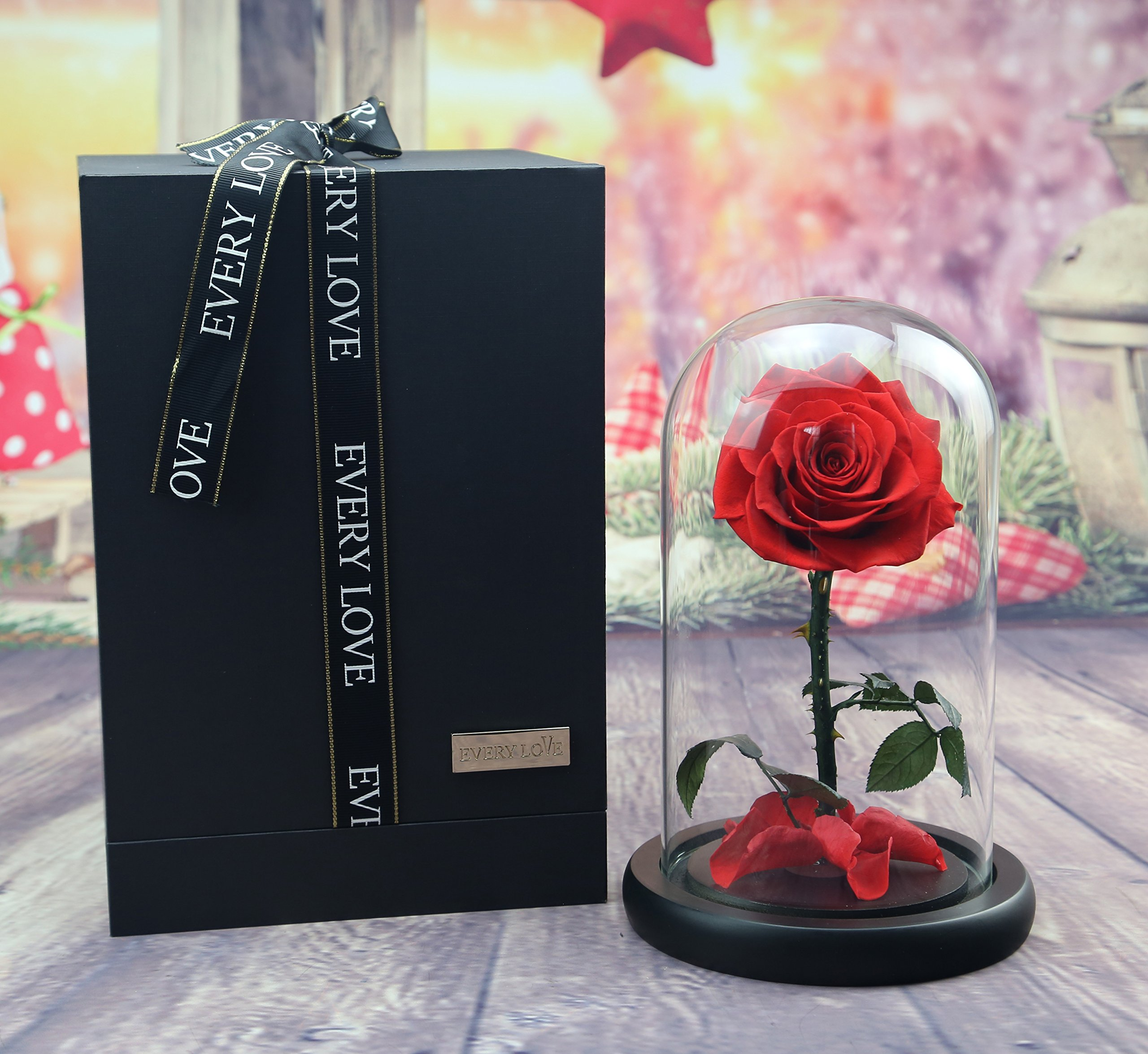 sexyrobot Beauty And The Beast Rose, Preserved Fresh Flower with Fallen Petals in a Glass, with Exquisite Gift Box