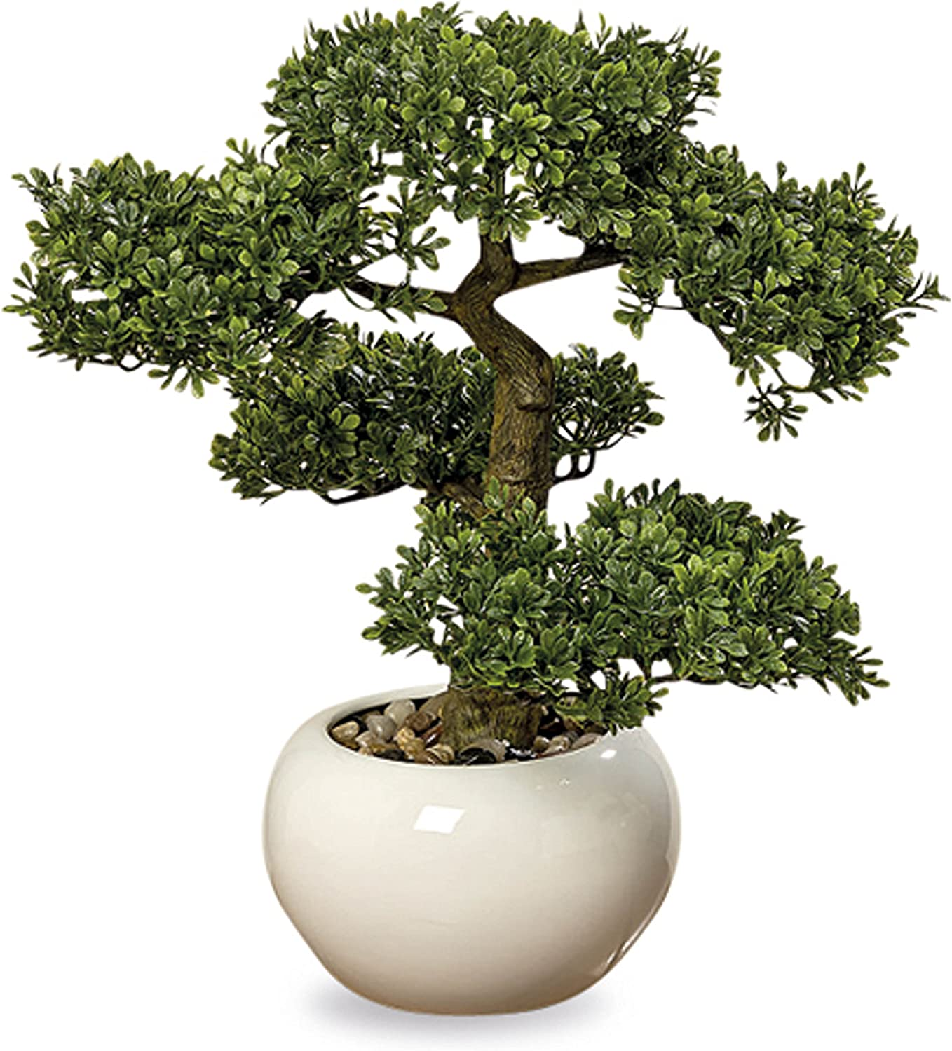 Amazon Com Whw Whole House Worlds Realistic Faux Harland Boxwood Bonsai Tree Houseplant White Round Pot Pebbles Padded Bottom Over 1 Ft Tall H33cm Home Kitchen