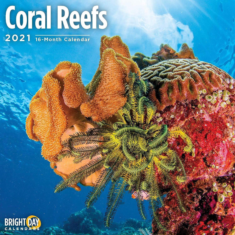Photos of Reef Calendar 2021