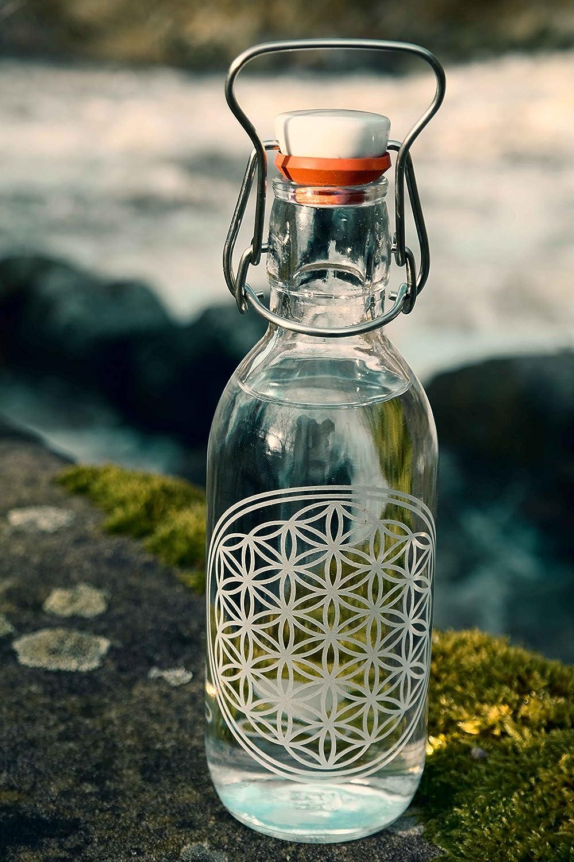 freiglas 0,5L Botella de cristal * * 100% Sin plástico de la flor de la Vida, SOSTENIBLE, fabricado en Freiburg: Amazon.es: Hogar