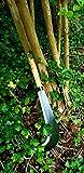 Knights Of Armur Billhook Sickle Machete Knife