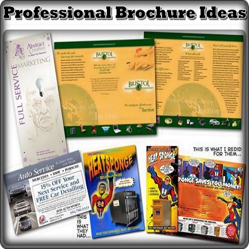Professional Brochure Ideas