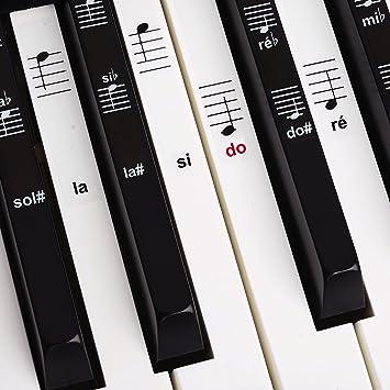 Set de pegatinas para teclado electrónico o piano con 88 teclas, ideal para aprender a tocar rápido, plástico laminado transparente: Amazon.es: Instrumentos ...