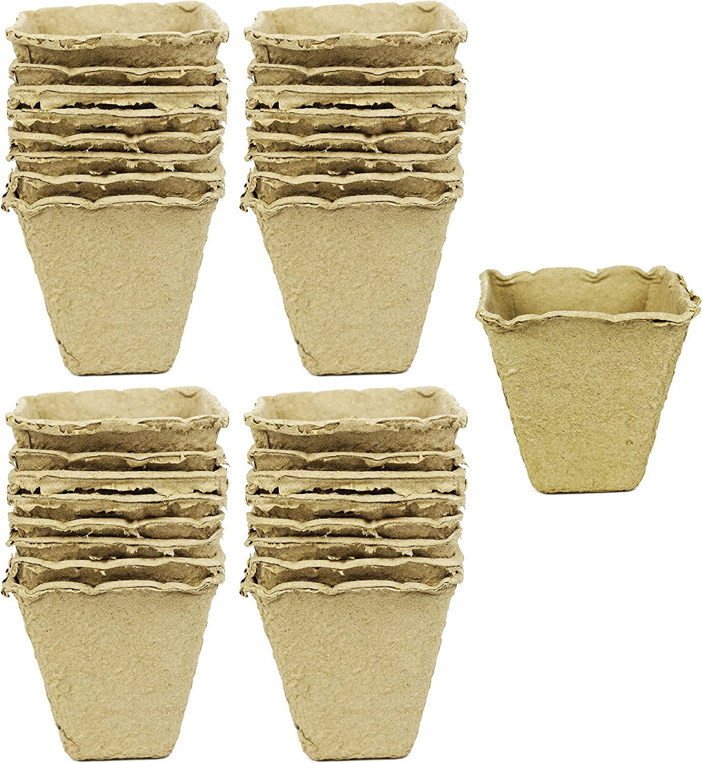 Set of 32 Biodegradable Eco Friendly Peat Pots 3 – 12 Pot Tray – Recycled Non Bleached Peat Pots Perfect for Seed Germination No Transplanting Required – No More Damaged Roots